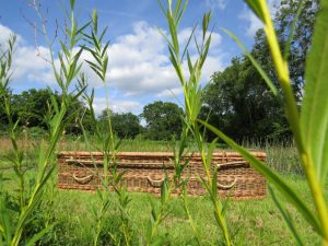 Willow Coffin from Natural English Willow | Sussex Willow Coffins